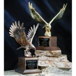 Majestic Eagle Achievement Awards